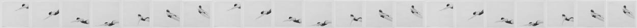 Melbourne artist Rebecca Jones - Artwork - Drawing - Swimming - Open Water - Under the Wave