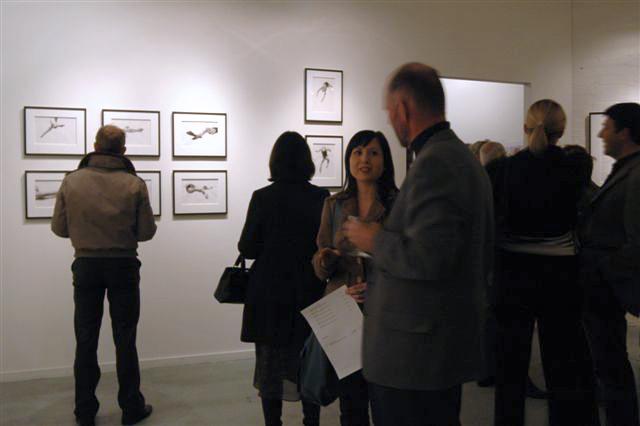 Melbourne artist Rebecca Jones - Exhibition - Depth (2007)
