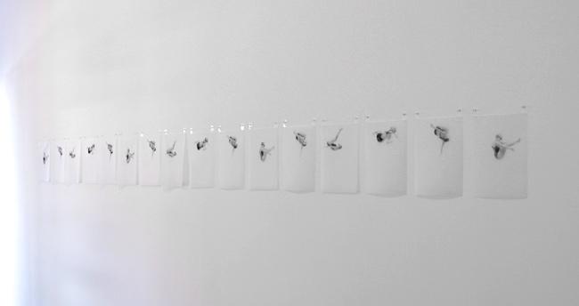 Melbourne artist Rebecca Jones - Exhibition - Launch 3 (2010)